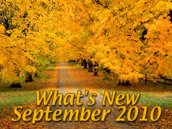 What's New August 2010