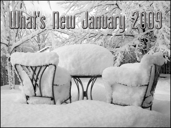 What's New January 2009 Patio set covered in snow.